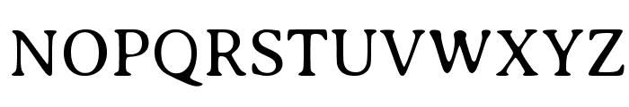 Averia Serif Libre Light Font UPPERCASE