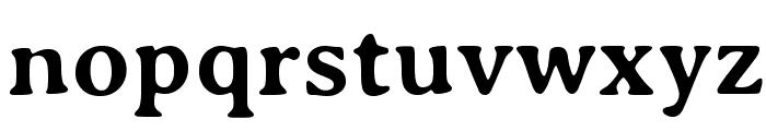 AveriaSerif-Bold Font LOWERCASE
