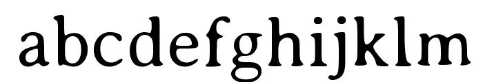 AveriaSerif-Light Font LOWERCASE