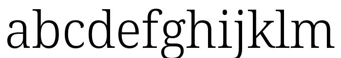 Avrile Serif Light Font LOWERCASE