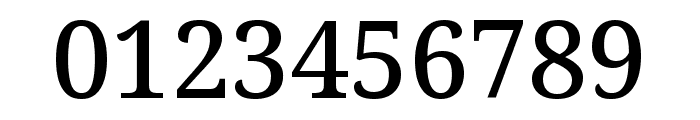 Avrile Serif Medium Font OTHER CHARS