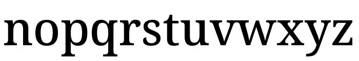 Avrile Serif Medium Font LOWERCASE