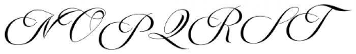 Avelon Script Regular Font UPPERCASE