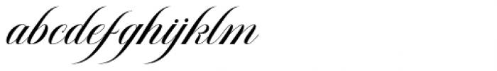 Avelon Script Regular Font LOWERCASE