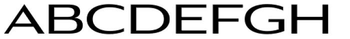 Aviano Gothic Bold Font UPPERCASE