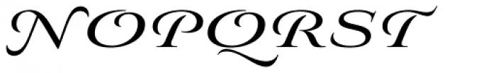 Aviano Royale Bold Font UPPERCASE