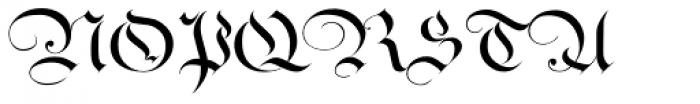 Ayres Royal Plus Font UPPERCASE