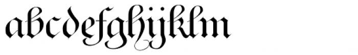 Ayres Royal Plus Font LOWERCASE