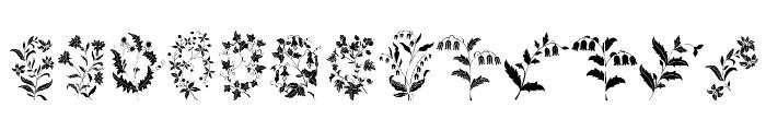 Azalleia Ornaments Free Font LOWERCASE