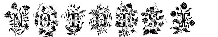 Azalleia One Font UPPERCASE