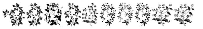Azalleia Ornaments Font UPPERCASE