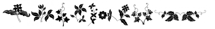 Azalleia Ornaments Font LOWERCASE