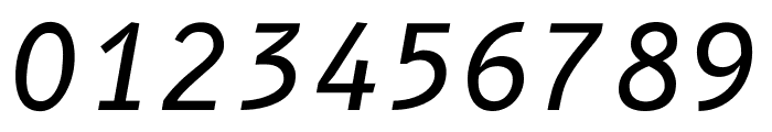 B612 Mono Italic Font OTHER CHARS