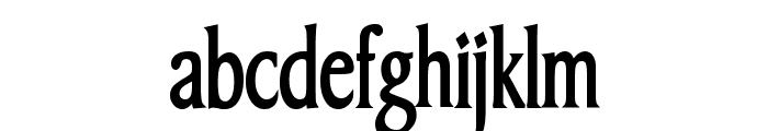 Barrett Thin Bold Font LOWERCASE