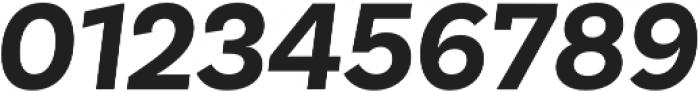 Basic Sans Bold It otf (700) Font OTHER CHARS