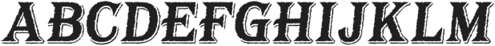 BaysideTavernS-BoldItalic otf (700) Font UPPERCASE