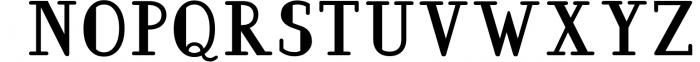 BarkWise - Multi-Purpose Serif Font Font UPPERCASE