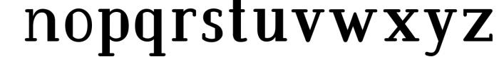 BarkWise - Multi-Purpose Serif Font Font LOWERCASE