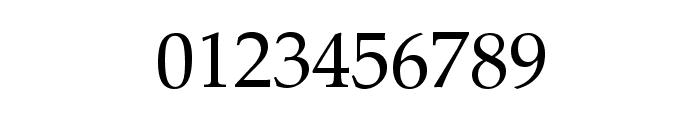 Bagga 83 EN  Pravin v1.00 Font OTHER CHARS