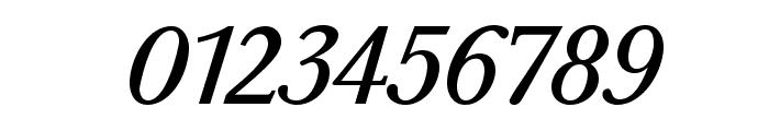 BaskervaldADFStd-Italic Font OTHER CHARS