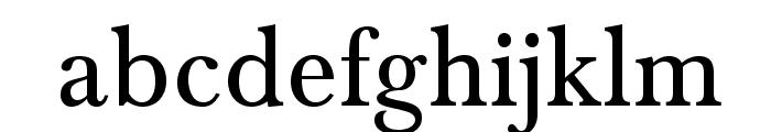 BaskervaldADFStd Font LOWERCASE