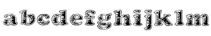 Battered Cooper Font LOWERCASE