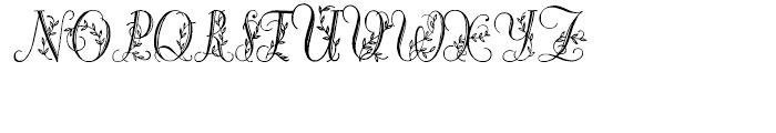 Bailarina Regular Font UPPERCASE