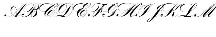 Bank Script Standard D Font UPPERCASE