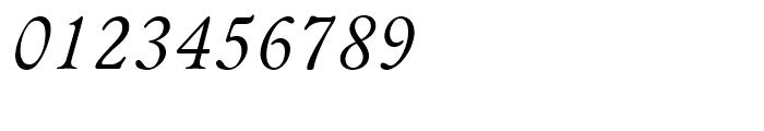 Bannikova Italic Font OTHER CHARS