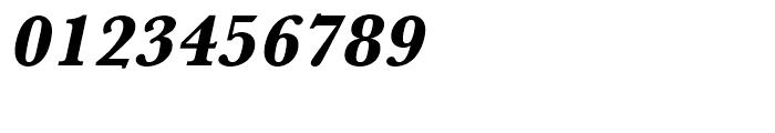 Baskerville Extra Bold Oblique Font OTHER CHARS