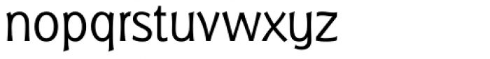 Badger Pro Light Font LOWERCASE