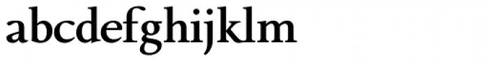 Bague Text DemiBold Font LOWERCASE
