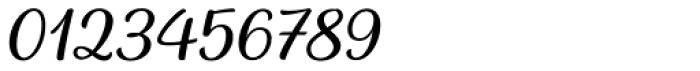 Baguet Script Thin italic Font OTHER CHARS
