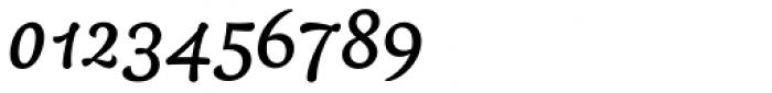 Baldufa Arabic-Latin Italic Font OTHER CHARS