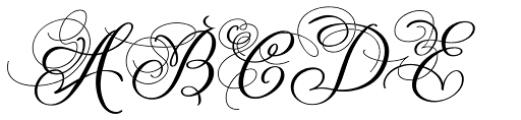 Baltan Swash SemiBold Font UPPERCASE