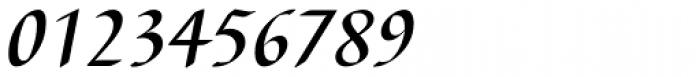 Barbedor EF Medium Italic Font OTHER CHARS