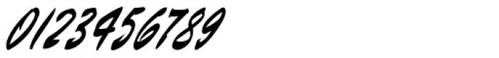 Barnstormer Script Font OTHER CHARS
