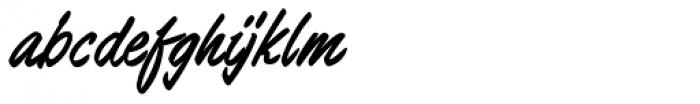 Barnstormer Script Font LOWERCASE