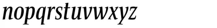 Bartholeme Medium Italic Font LOWERCASE