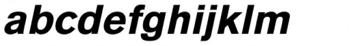 Basic Commercial Std Black Italic Font LOWERCASE