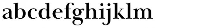 Baskerville Display PT Bold Font LOWERCASE