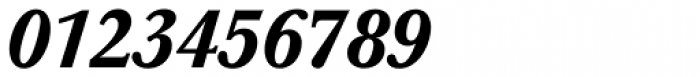 Baskerville Pro Medium Italic Font OTHER CHARS