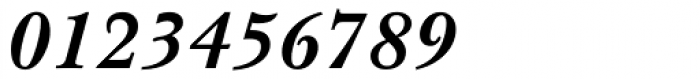 Baskerville WGL4 Bold Italic Font OTHER CHARS
