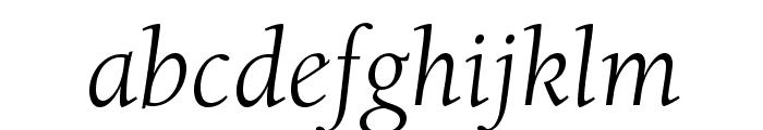 BerkeleyStd-BookItalic Font LOWERCASE