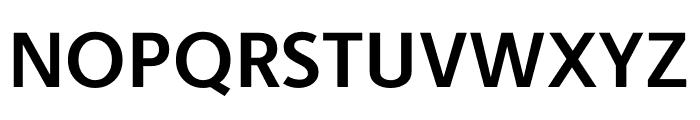 Berlingske Sans Bold Font UPPERCASE