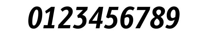 Berlingske Sans Condensed Bold Italic Font OTHER CHARS