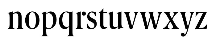 Berlingske Serif Condensed Medium Font LOWERCASE