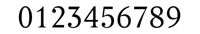 Berlingske Serif Text Light Font OTHER CHARS
