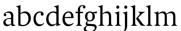 Berlingske Serif Text Light Font LOWERCASE