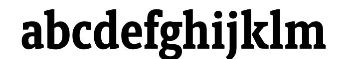 Berlingske Slab Condensed Bold Font LOWERCASE